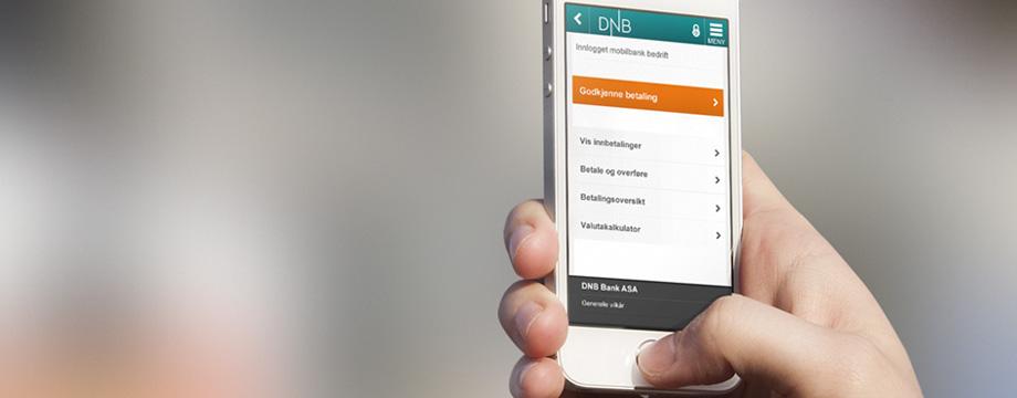 Dnb fond app